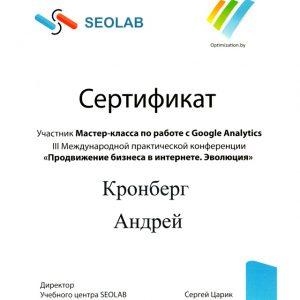 Сертификат Международной Конференции